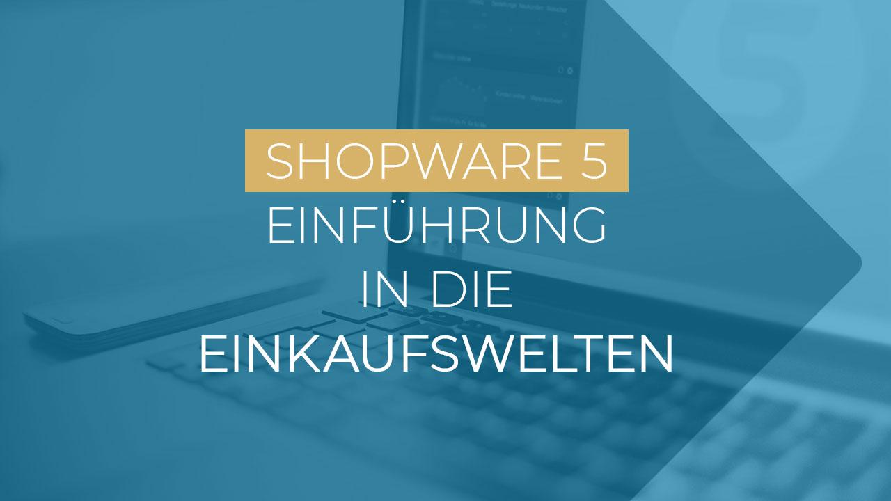 Shopware Einkaufswelten Einführung