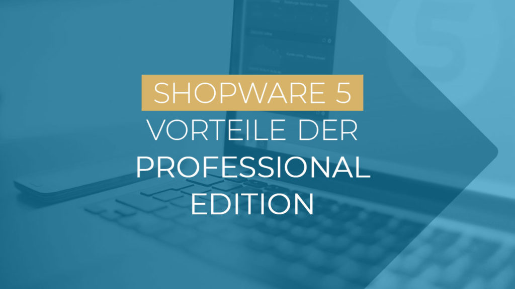 Shopware Professional Edition Vorteile